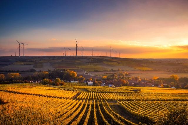Mehr Nachhaltigkeit durch Cloud-Lösungen